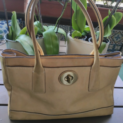 Bolso mostaza Coach Best for less